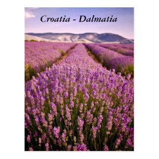 Carte Postale La Croatie - la Dalmatie