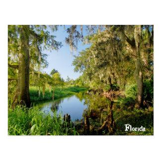 Carte Postale La Floride