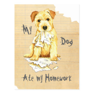 Carte Postale La ma Norfolk Terrier a mangé mon travail