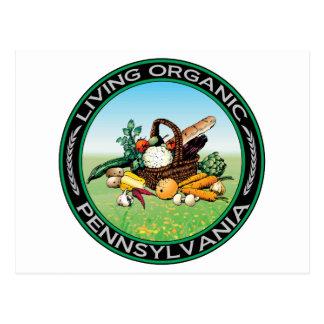 Carte Postale La Pennsylvanie organique