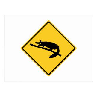 Carte Postale La précaution avec les opossums 1, trafiquent le