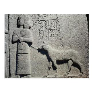 Carte Postale La Reine Tuwarissa, épouse du Roi Araras