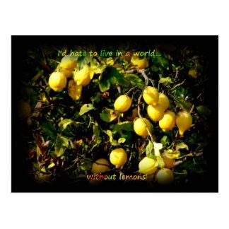 Carte Postale La vie de citron