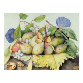 Carte Postale La vie toujours avec des prunes, des noix et le