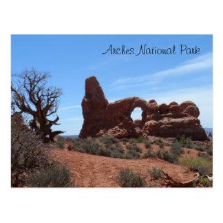 Carte Postale La voûte de tourelle arque le parc national
