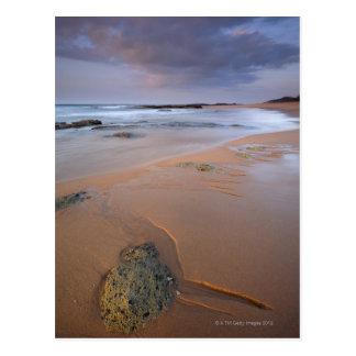 Carte Postale La vue courbe du rivage bascule à l'aube et