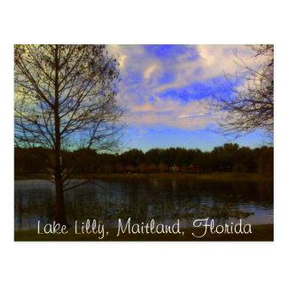 Carte Postale Lac Lilly, la Floride