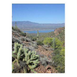 Carte Postale Lac roosevelt de monument national de Tonto
