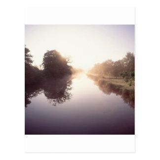 Carte Postale Lac summer d'arbres de nature