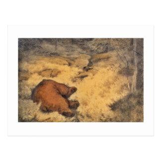 """Carte Postale """"Laissez le mensonge d'ours de sommeil """""""