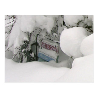 Carte Postale Laissez lui neiger !