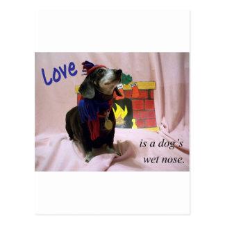 Carte Postale L'amour est le nez humide d'un chien