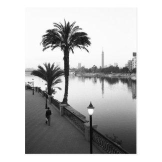Carte Postale Le Caire Egypte, le long du Nil