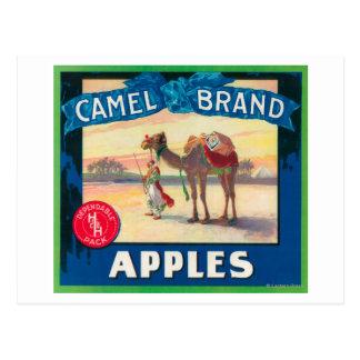 Carte Postale Le chameau Apple marquent - l'état de Washington