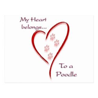 Carte Postale Le coeur de caniche appartient
