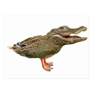 Carte Postale Le Crocoduck avec des pieds