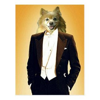 Carte Postale Le Fox est un monsieur
