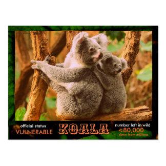 Carte Postale LE KOALA (ours) est mis en danger, a lu ceci :  -