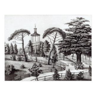 Carte Postale Le labyrinthe du Jardin des Plantes