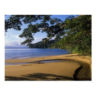 Carte Postale Le Madagascar, excédent affecté fouineur de