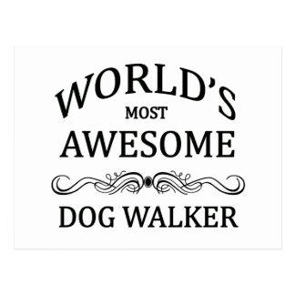 Carte Postale Le marcheur du chien le plus impressionnant du