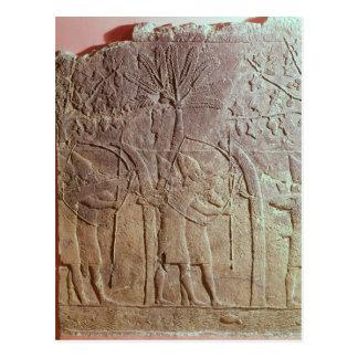 Carte Postale Le siège d'Alammu par l'armée de Sennacherib