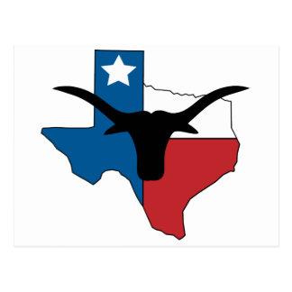 Carte Postale Le Texas Longhorn