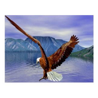 Carte Postale l'eau d'aigle