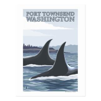 Carte Postale Les baleines #1 d'orque - mettez en communication