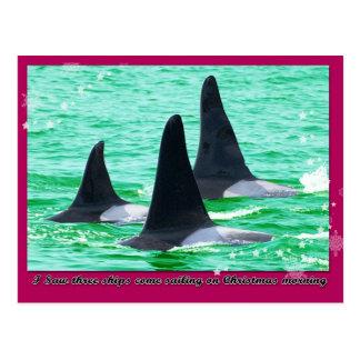 Carte Postale Les baleines d'orque viennent navigation des