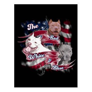 Carte Postale Les chiens rouges, blancs et bleus de Pitbull