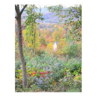 Carte Postale les couleurs d'une chute de montagne
