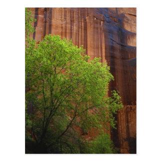 Carte Postale Les Etats-Unis, Utah, falaises de vermillon de