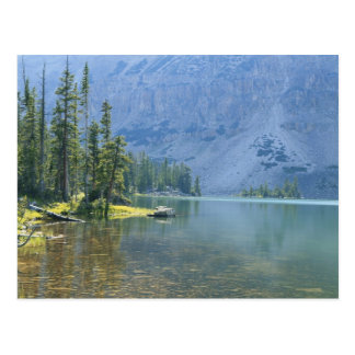 Carte Postale Les Etats-Unis, Utah, réserve forestière d'Ashley,