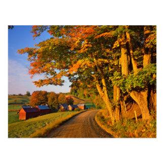 Carte Postale Les Etats-Unis, Vermont, Woodstock du sud