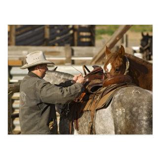 Carte Postale Les Etats-Unis, Washington, Malaga, cowboy se