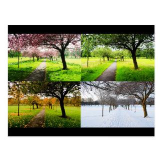 Carte Postale Les quatre saisons