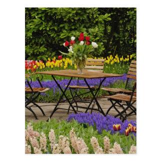 Carte Postale Les tulipes de la table dans le jardin, Keukenhof