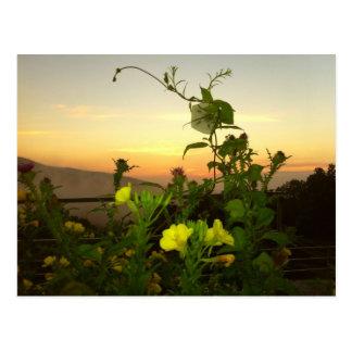 Carte Postale lever de soleil
