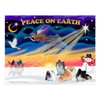 Carte Postale Lever de soleil de Noël - quatre Pomeranians