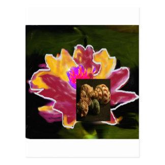 Carte Postale lilys de nass