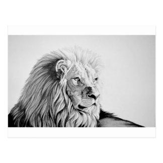 Carte Postale Lion majestueux