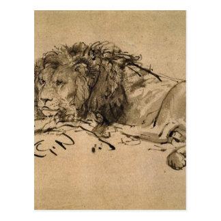 Carte Postale Lion se reposant par Rembrandt