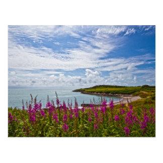 Carte Postale Littoral du nord du Pays de Galles