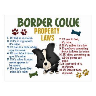 Carte Postale Lois 4 de propriété de border collie