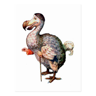 Carte Postale L'oiseau de dronte