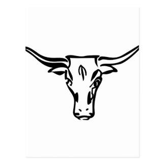 Carte Postale Longhorns