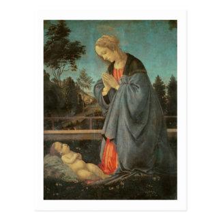 Carte Postale Madonna adorant l'enfant, c.1477-80 (huile sur p