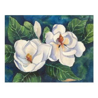 Carte Postale Magnolias du sud