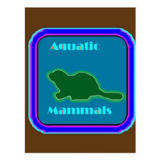 Carte Postale Mammifères aquatiques - amants de nature préférés